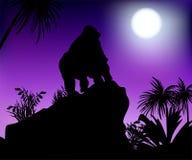 Gorila debajo de la luna Fotos de archivo libres de regalías