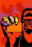 Gorila e um cartão Fotografia de Stock