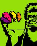 Gorila e um cartão Imagem de Stock
