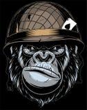 Gorila en el casco militar stock de ilustración