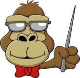 Gorila esperto dos desenhos animados Fotografia de Stock