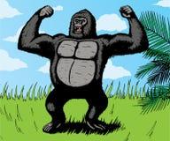 Gorila gigante Imágenes de archivo libres de regalías
