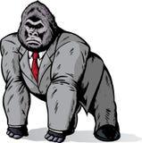 Gorila no terno Imagens de Stock