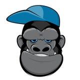 Gorila sonriente con un casquillo Fotografía de archivo libre de regalías
