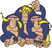 Gorilas con los plátanos Foto de archivo