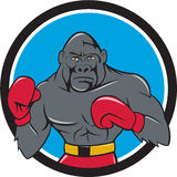 Gorilla Boxer Boxing Stance Circle Cartoon. Illustration of a gorilla boxer in boxing stance viewed from front set inside circle done in cartoon style Royalty Free Stock Photography