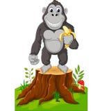 Gorilla Cartoon royaltyfri illustrationer