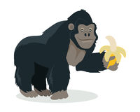 Gorilla Cartoon Icon in Flat Design. Gorilla cartoon character. Funny big ape with banana in hand flat vector isolated on white. African fauna. Gorilla icon Royalty Free Stock Photos