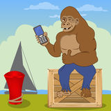 Gorilla with cellphone Stock Image