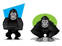 Gorilla Character Set Stock Images