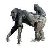 Gorilla con il bambino Isolato sopra bianco Fotografie Stock Libere da Diritti