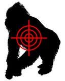 Gorilla crosslines Stock Photos