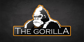 Gorilla. On a dark background. Vector  with room for text Royalty Free Stock Images