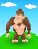 Gorilla in de wildernis Royalty-vrije Stock Foto's