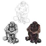Gorilla Stockbild