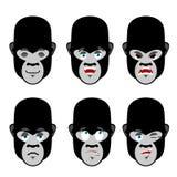 Gorilla emotions. Set expressions avatar monkey. Good and evil b Royalty Free Stock Image