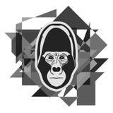 Gorilla Face Imagen de archivo libre de regalías