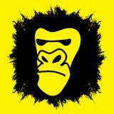 Gorilla Face Photos libres de droits
