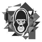 Gorilla face Royalty Free Stock Image