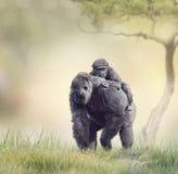 Gorilla Female mit ihrem Baby Stockbilder