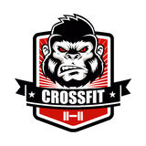 Gorilla fitness gym and sport club logo emblem design. Royalty Free Stock Image