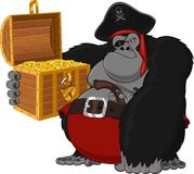 Gorilla harsh pirate Royalty Free Stock Images
