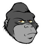 Gorilla head. Cartoon vector illustration of a gorilla head Stock Images