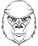 Gorilla head. Black and white drawing Stock Photography