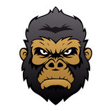 Gorilla Head Cartoon Photo stock