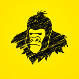 Gorilla Head. Designed using grunge brush graphic vector Royalty Free Stock Photo