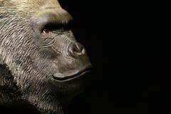 Gorilla head gold bokeh stock photo