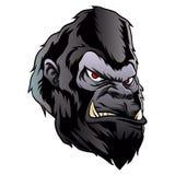 Gorilla head illustration. Vector illustration Royalty Free Stock Photo