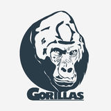 Gorilla head logo design Stock Images