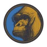 Gorilla Head Logo Mascot Emblem Photos libres de droits