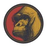 Gorilla Head Logo Mascot Emblem Photographie stock libre de droits