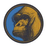Gorilla Head Logo Mascot Emblem Royalty Free Stock Photos