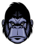 Gorilla head mascot Stock Images