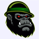 Gorilla Head militaire illustration stock