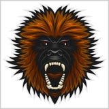 Gorilla head vector isolated. Gorilla head vector illustration - isolated on white Stock Photos