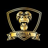 Gorilla head vector logo for sport design. Gold color and black background, animal, wild, monkey, primate, mascot, angry, isolated, strong, illustration, power stock illustration