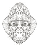 Gorilla head zentangle stylized, vector, illustration, freehand Royalty Free Stock Images