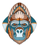Gorilla head zentangle stylized, vector, illustration, freehand Royalty Free Stock Photos