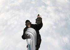 Gorilla Holding Girl In Hand-de Illustratie van de Torenfantasie Royalty-vrije Stock Foto