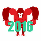 Gorilla keeps numbers 2016. Symbol of new year red monkey. Vector illustration of African animal Vector Illustration