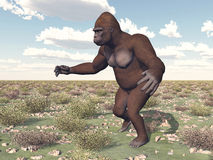 Gorilla in a landscape Royalty Free Stock Photo