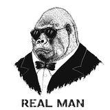 Gorilla like a real man Stock Photo