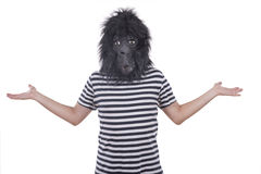 Gorilla man. Isolated on a white background Royalty Free Stock Image
