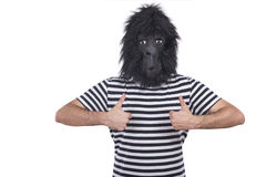 Gorilla man. Isolated on a white background Stock Image