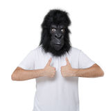 Gorilla man. Man with a gorilla mask giving the everything is OK sign, isolated on a white background Royalty Free Stock Image