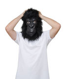 Gorilla man. Man with a gorilla mask, isolated on a white background, in a desperate position Stock Images